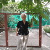 Эльвира, 69, г.Ворошиловград