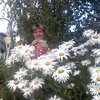 Валентина, 60, г.Сафоново