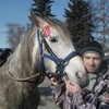 Александр, 40, г.Бронницы