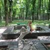 Валентина, 41, г.Иловайск