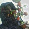 Pasha, 22, г.Гадяч
